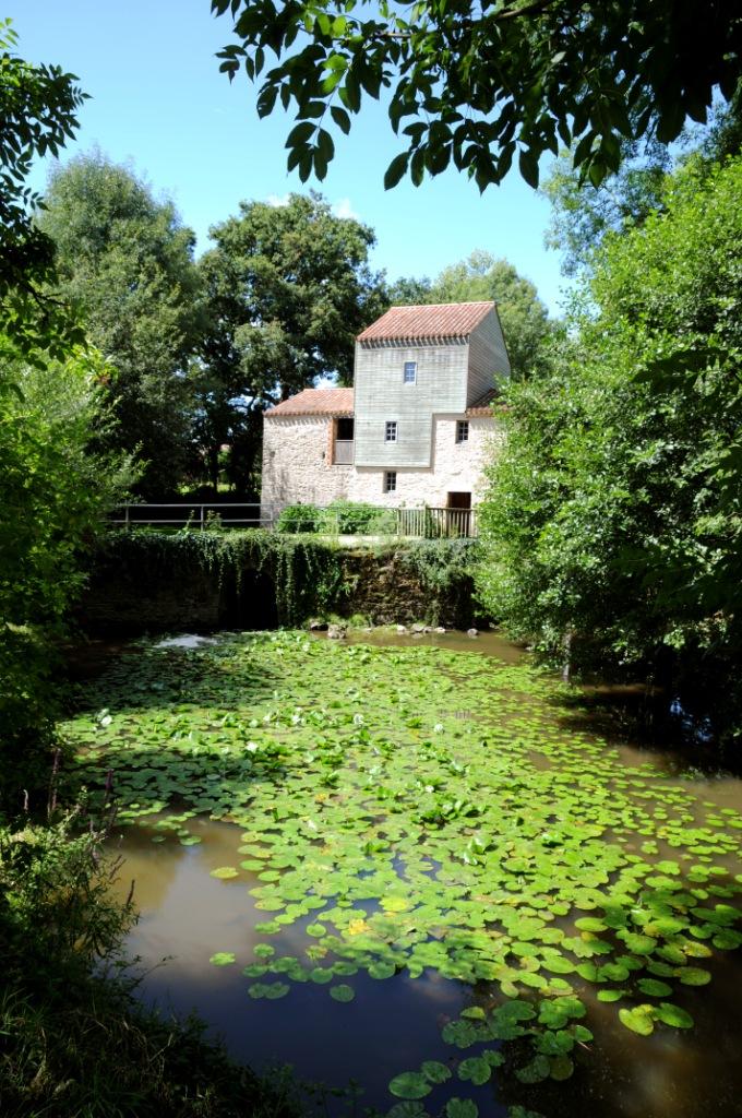 2012-07-03_cteagglo_lrsy_maison-des-libellules_vue_le_moulin_de_rambourg_nesmy-fr_