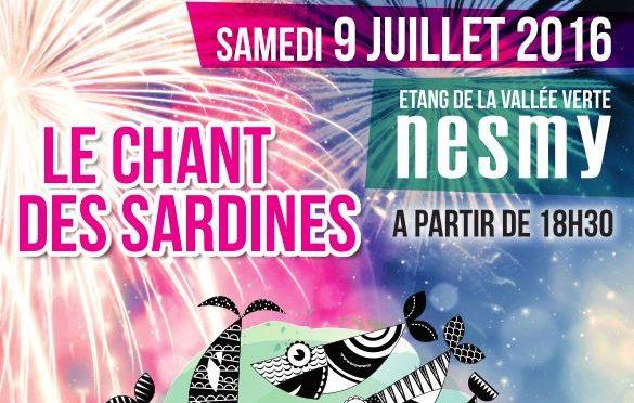 Archives : Fête Nationale et Feu d'artifice le 9 juillet 2016 à Nesmy